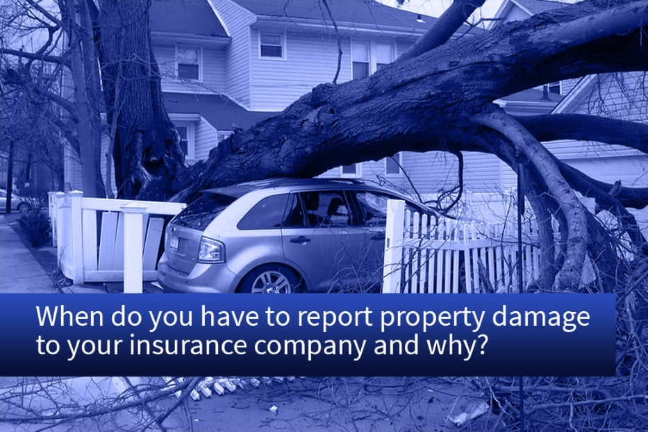 When to report property damage to insurance company