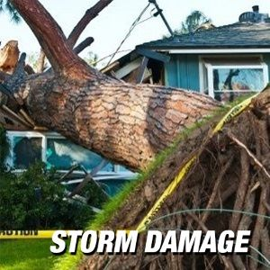 Storm Damage Insurance Attorney