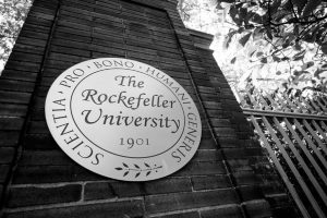 Rockefeller University Lawsuit Attorney 3 (1)